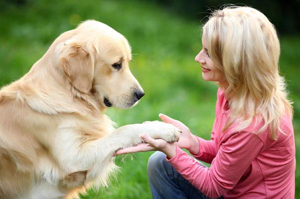 Woman-training-her-dog